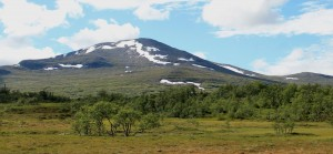 A view on the mountain called Storsnasen: with 1463 meter one of the highest mountains in the area.