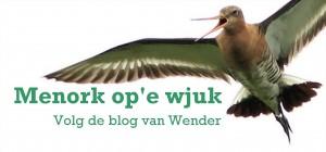 Logo menorkblog_2